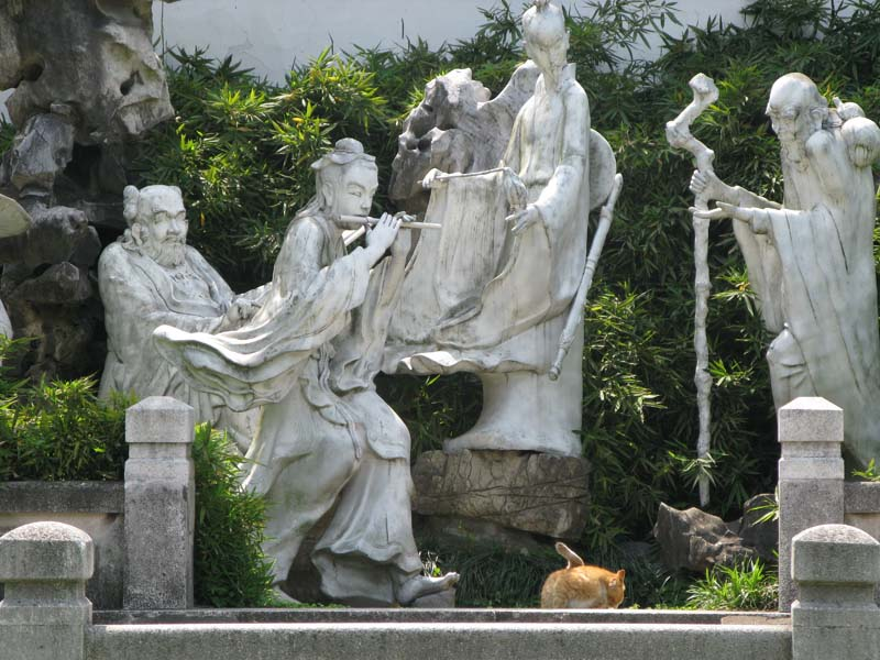 Parc Shangaï - Taichi Pro