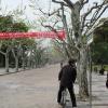 Paysage Shangaï - Taichi Pro