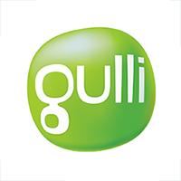 Logo Gulli - Taichi Pro